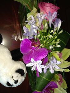 Flowers, and a small panda, say welcome home
