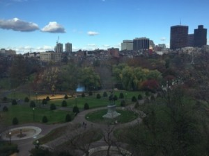 View of the Public Garden from the Tata Suite