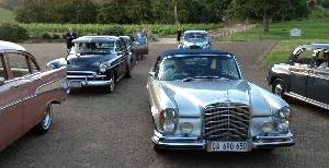 vintage cars at luxury event in south africa