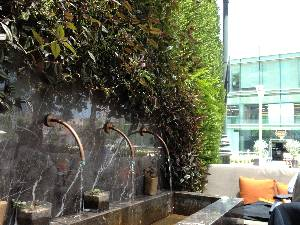 Living wall outside the street-set restaurants