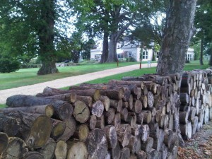 A wall of logs-for-fires at The Pigs luxury country hotel drive