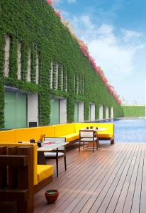 Luxury hotels and travel - World's largest living wall at the Oberoi, Gurgaon