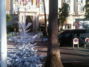 White-frosted Christmas tree in front of the 1912-vintage Carlton InterContinental