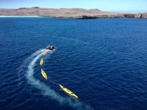 A string of kayaks awaits