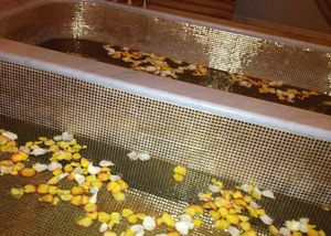 Gold bath-tubs filled with fresh petals, in a spa room