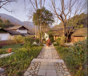 Fayan Pathway, the old village street, still runs through what was once a thriving tea plantation village