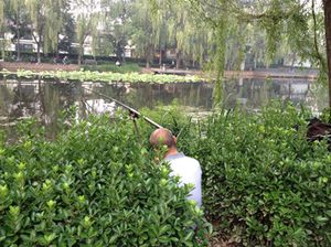 Calm is fishing in the canal...