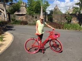 A scarlet Martone bike