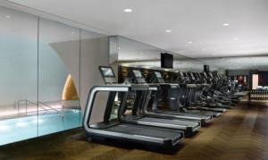 Fitness and swimming, Park  Hyatt Vienna