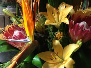 Proteas and lilies