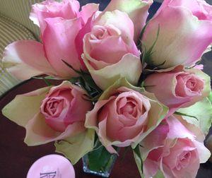 Roses in suite 217