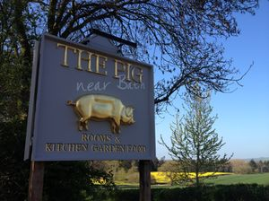 Welcome to The Pig Near Bath