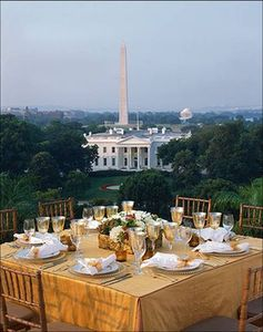 The closest hotel to The White House (from the Hay-Adams' rooftop)