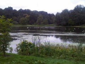 The lake at Mount Stewart...