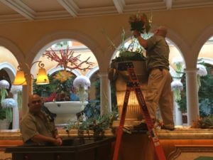 Florists at work, 5.15 a.m.