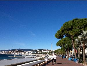 Runners at the Croisette in Cannes, France
