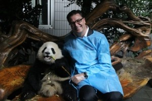 Paul James and Chengdu panda