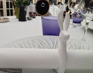 Dinner setting (napkin in a rabbit ring)