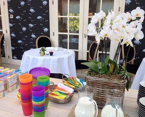 Kids' set-up, plus orchids