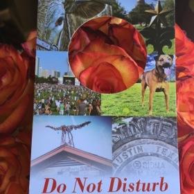 The fun 'do not disturb'