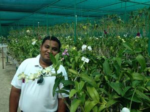 Ibbe the orchid master