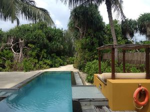 View from villa 226, over-pool to private path to beach