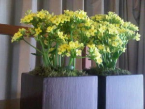 flowers at grand hyatt sao paulo luxury hotel