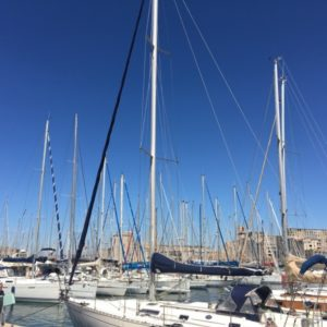 The harbour is a criss-cross of masts