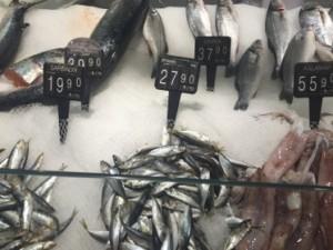 Fish for dinner..