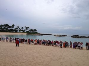 .. for 50 couples renewing vows, on the beach
