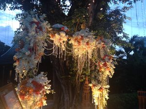Orchids galore, and illumination, for a wedding arch
