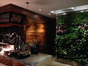 La Mar's living wall