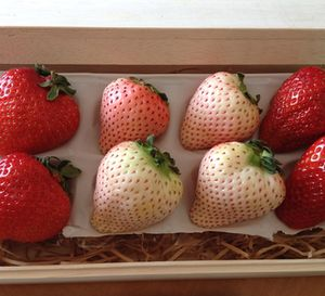 Perfect strawberries in the bedroom…