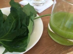 Chaya drink, and leaf