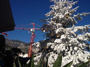 Cranes hover overhead..