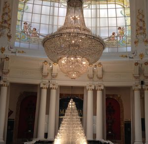 The Winter Garden now holds a water-fall Christmas tree