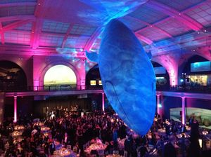 Gala at the American Natural History Museum