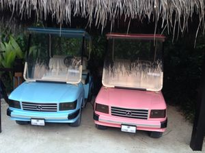 His and hers 'Mercedes' buggies