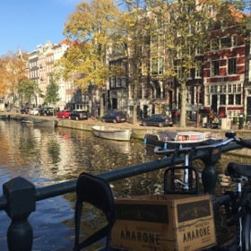 Amsterdam's famous canals were dug 1613