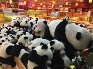 Pandas galore at the airport