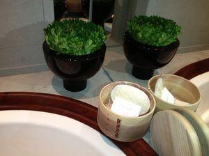 Sensually stylish bathtub display