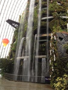 Gushing waterfall in the Cloud Forest