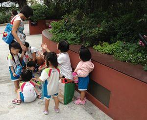 Kids love these gardens