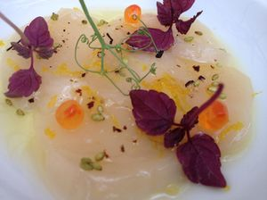 Belgians take food VERY seriously - my scallop carpaccio amuse